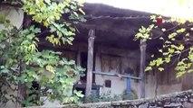 Kalem İşi Süslemeleriyle Dikkat Çeken Tarihi Damatlı Camii  Göz Göre Göre Yok Oluyor