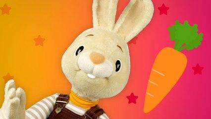 Coleção do Coelhinho Harry   Videos Educativos Para Crianças   Desenhos Educativos   BabyFirst TV