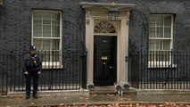Larry The Cat at Downing Street for crunch Cabinet meeting