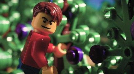 Lego BRiX - French Wines