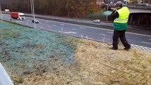 Le talus de l'autoroute à Bierges «repeint» avec des plantes sauvages