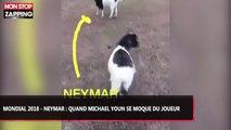 Mondial 2018 - Neymar : Quand Michael Youn se moque du Brésilien, la vidéo hilarante