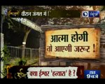 जंगल में पसरी खौफ की कहानी । वीरान जंगल में छिपे डर का सामना । Live