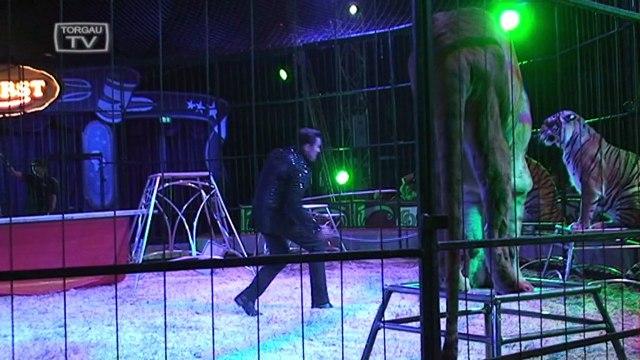 Gastspiel Circus Probst in Torgau - Teil 2 von 2