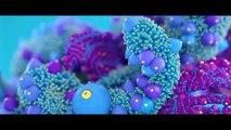 Steez Boy Tel-Em - Shine The Light (Official Music Video) Explicit - Steez BoyVEVO