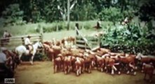 Ride with Norman Reedus S02 - Ep05 Hawaii The Big Island HD Watch