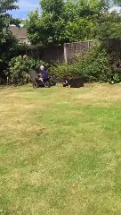 How to make your son work in the garden He mows the lawn!