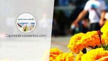 SAINT-NAZAIRE : T2 à louer dans une Résidence Services Seniors