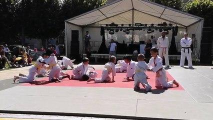 Démonstration de judo du 23/06/2018 fête de la saint Jean de Solers