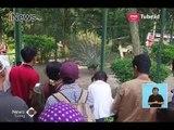 Pengunjung Taman Marga Satwa Ragunan Diprediksi Mencapai 100 Ribu - iNews Siang 16/06