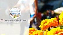 Investir dans une Résidence Services Seniors : grand T2 à LA ROCHELLE