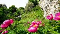 Bergtour im Trentino: Über die Cima Alta Palon