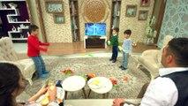 Mobays Tv Ekran Koruyucu - Tv Panel Koruma - Tv Koruma Camı