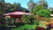 Tambor Farm - Tropical, lush 12 acre farm in Costa Rica