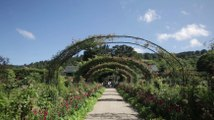 Jardin d'Exception : Découvrez la Fondation Claude Monet