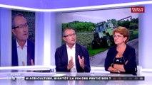 """Régulation des pesticides : """"c'est au niveau européen qu'on doit prendre les décisions qui nous permettraient d'amoindrir les effets économiques"""" pour Henri Cabanel #UMED"""
