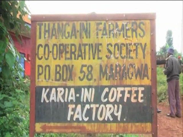 Muranga Coffee Row