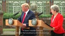 Highlights From Donald Trump And Theresa May's Awkward Press Conference