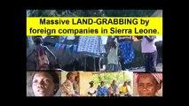 SIERRA LEONE:-Massive LAND-GRABBING by foreign companies in Sierra Leone.+++The silent destabilisation of rural communities of Sierra Leone is happening on a