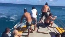 Ils s'amusent à prendre les vagues géantes dans leur yacht : impressionnant
