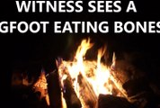 2 True Stories - Witness Sees A Bigfoot Eating Bones! The Creature Was Holding A Club!-1