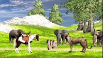 Animals_Race_-_Horse_Vs_Cheetah_Animal_Running_Race_Video_for_Children___Who_Wil
