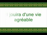 Video SOURATE AL HAQUAH 69 SALAH AL BUDAIR -