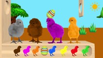 Learn Color With Chicks Animals Xylophone Funny ! Colours With Chicks for Kids