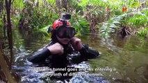 Le plus long système sous marin découvert au Mexique