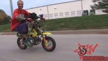 Amazing DOG Tricks Best Motorcycle STUNTS Pooch Riding WHEELIES Jack Russell Terrier Bike WHEELIE