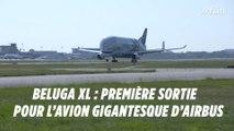 Beluga XL : première sortie pour l'avion gigantesque d'Airbus