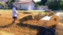 La moisson des blés à Saint Pierre et Saint Julien