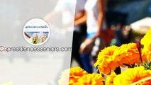 VITRY-LE-FRANCOIS : investir dans un T2 dans une  Résidence Services Seniors