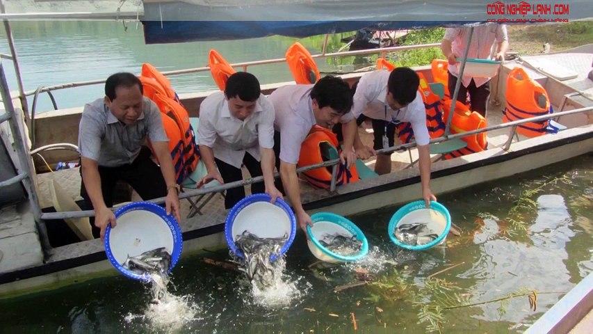 Hà Nội báo động đỏ suy giảm nguồn lợi thủy sản