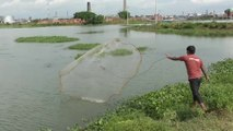 Unbelievable He Cast Net and Catch Big Fish  Cambodian People Catching Fish By Using The Net,
