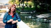 Cancion para mi Hijo HIJO MIO una profecia hecha cancion  Silvana Armentano