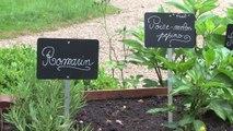 Permaculture et semences paysannes au ministère de la Transition écologique et solidaire