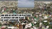 Une mer de déchets en plastique s'est déversée sur une plage de Saint-Domingue