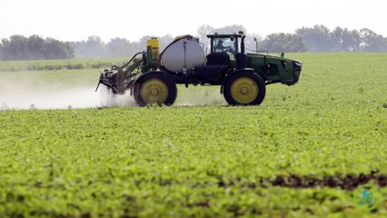Genetically Engineered Foods That Might be Dangerous