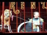 Les tigres du cirque Universal Renz