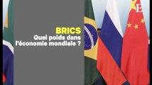 Les BRICS, entre ambitions économiques et bataille de leadership
