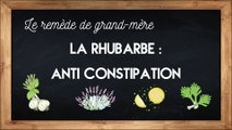 La rhubarbe, un laxatif naturel