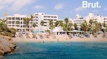 Chypre : le tourisme menace les phoques moines