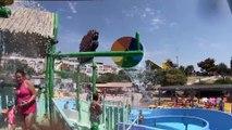 Glisse Aquatique dans les Toboggans du Parc Aquatique Aqualand