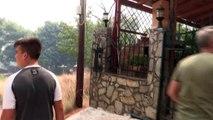 Grèce: plus de 50 morts dans des incendies près d'Athènes