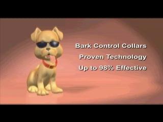 Stop Dog Barking Anti Bark Collar – Dream Dog