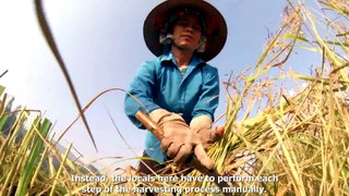 Taste of Vietnam 2 tap 02 Kham pha Yen Bai cung Ro