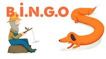 STEVE WARING - B.I.N.G.O - comptine en anglais pour enfant