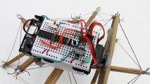 Bamboo Tensegrity Robot 'Shi'