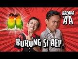 (Web Series) Balada Si AA Episode Burung si Aep